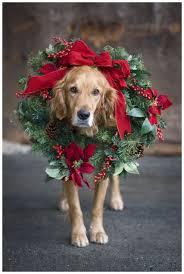 top 10 christmas card photo props cardsdirect blog