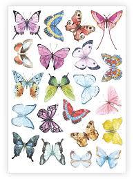 ducky temporary sheet butterflies designed by