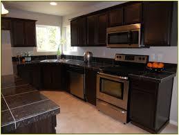 backsplash kitchens with dark cabinets and dark countertops