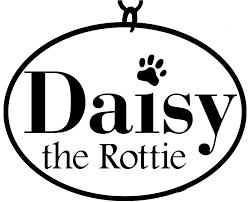 fun u2014 daisy the rottie