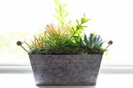 Rectangular Succulent Planter by Succulent Planter Diy Toy Elephant Succulent Planter Make It And
