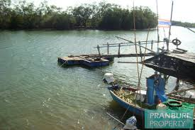 river front land for sale in pranburipranburi property com