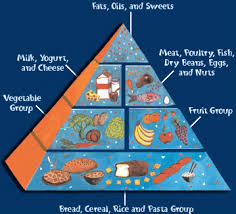 a healthy diet the food pyramid lower elementary science