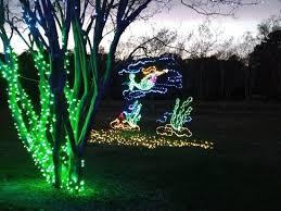 norfolk botanical gardens christmas lights 2017 million bulb walk 2017 picture of norfolk botanical garden