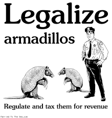Armadillo Meme - married to the sea comic archive apr 2009