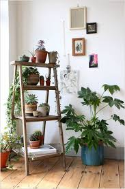 diy ladder plant stand plants interiors and gardens