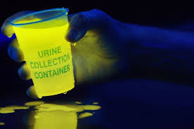 liquids that glow under black light why does urine glow under a black light