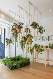Modern Indoor Planters Excellent Tall Indoor Planters 72 Tall Indoor Planters Plant