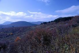 Shining Rock Wilderness Map Asheville Nc Shining Rock Backpacker