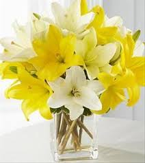 Yellow Lilies Buy Calla Lily And Asiatic Lily Online U2013 Send Lilies Flowers