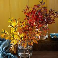 Fall Decorating Ideas On A Budget - 56 best fall decorations ideas images on pinterest decor ideas