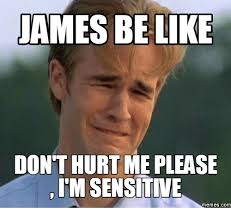 James Meme - james be like donthurt me please im sensitive memes com james meme