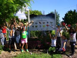 build your own rainforest kids ecology