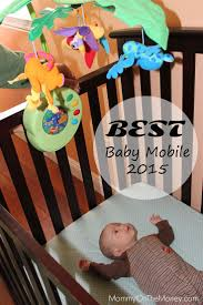 18 best owl baby room images on pinterest babies nursery baby