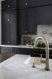 black shaker style kitchen cabinets brass accents and doors make for a darkly dramatic
