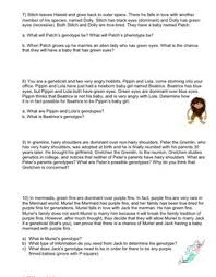 genetics punnett square practice worksheet by biology roots tpt