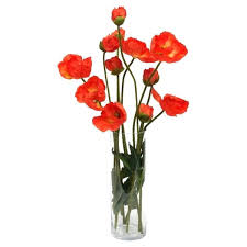 Poppy Home Decor Poppy Home Decor Poppies In Glass Vase Found On Featuring Home