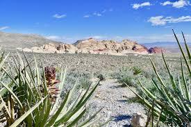 photo gallery red rock canyon las vegas