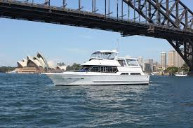 sydney harbor cruises sydney harbour highlights morning tea cruise tours to go
