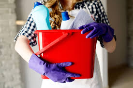 things you need for house what your housecleaner won u0027t tell you reader u0027s digest