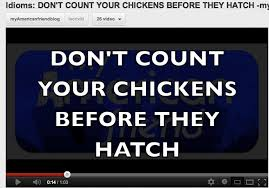 Never Count Your Chicken Before They Hatch Idiom Don T Count Your Chickens Before They Hatch My