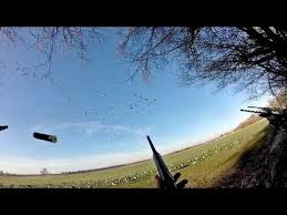 Avian Xa Frame Blind For Sale Shooting Honker U0027s And Specklebelly Geese Out Of The A Frame Blind