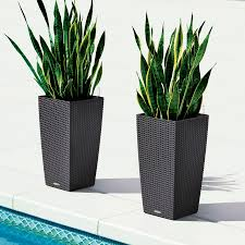 Indoor Planters Indoor Planters Urn Planter Window Boxes And More