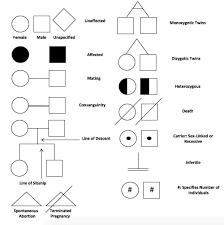 modes of inheritance step1 biochemistry step 1 medbullets com