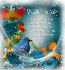 my wish for you today pictures photos and images for