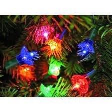 noma 40 pickwick tree lights groves nurseries