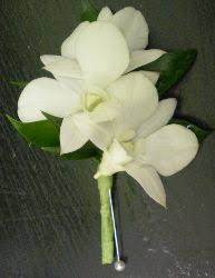 white dendrobium orchid boutonniere grande flowers