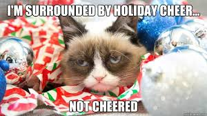Cat Christmas Meme - im surrounded by holiday cheer not cheered grumpy cat christmas