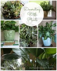 home decor plants 2017 grasscloth wallpaper