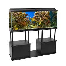 design mesmerizing 55 gallon fish tank for sale plus beautiful