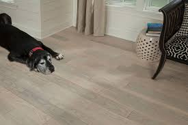 Ash Laminate Flooring Hardwoof Flooring Nydree Flooring