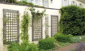 pergola trellis garden mesmerize garden trellis planter box