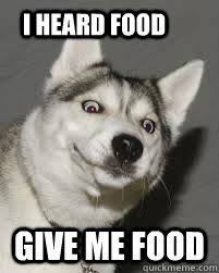 Dog Food Meme - food dog memes quickmeme