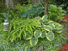 Shady Garden Ideas Flower Garden Ideas For The Backyard Flower Gardens Give The