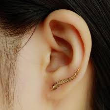 feather stud earrings gold plated leaf feather stud earrings world s shopping online