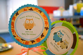 what a hoot owl themed baby shower crafts and ideas sash
