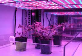 nasa farming for the future