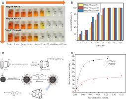recent advances on iron oxide magnetic nanoparticles as sorbents