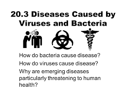 20 3 diseases caused by viruses and bacteria ppt download