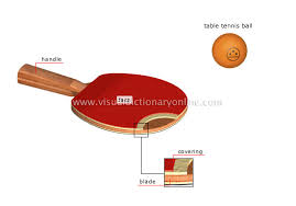 Table Tennis Racket Sports U0026 Games Racket Sports Table Tennis Table Tennis
