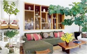 living room artificial plants home design