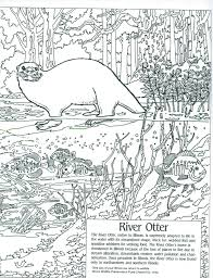 coloring pages of animals in their habitats education