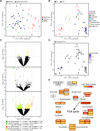 plos genetics comprehensive analysis of the transcriptional and