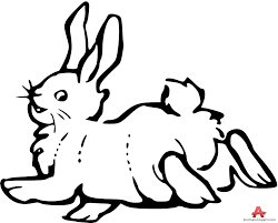 animals clipart of rabbit clipart with the keywords rabbit