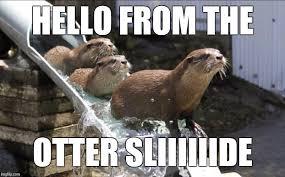 Funny Hello Meme - hello imgflip