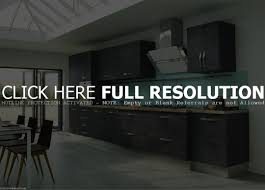 trendy luxury kitchen with high end appliances on new finest
